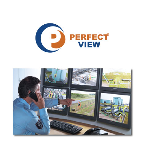 Perfect View Video Surveillance